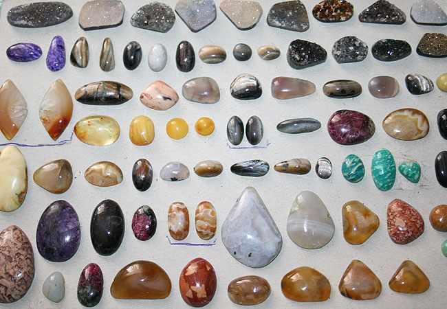 коллекция
