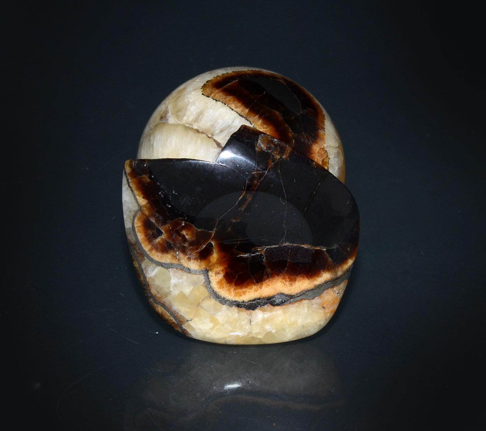 пирит с аммонитами