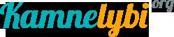 kamnelybi.com